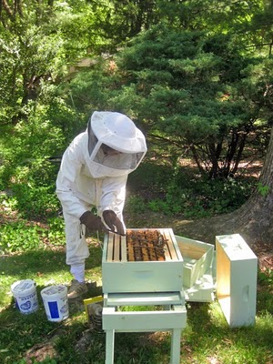 Honey Harvest Festival Anyone Homestead Gardens Inc Homestead Gardens Inc